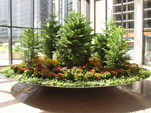 Plant Rentals, Landscaping and Design - Chicago, IL -