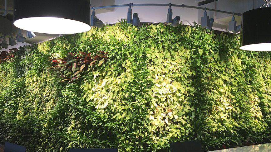 Built-In-Biowall