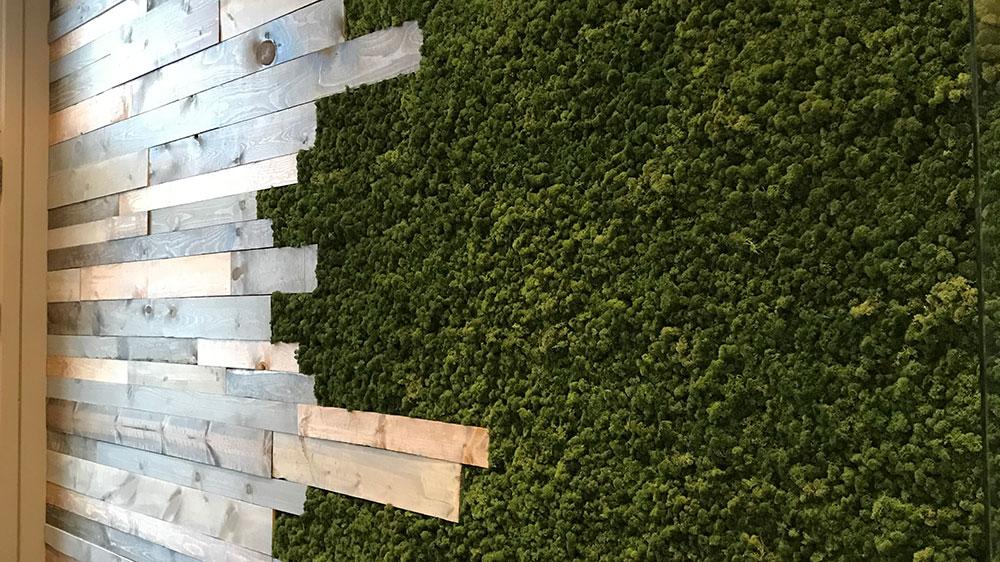 install moss walls